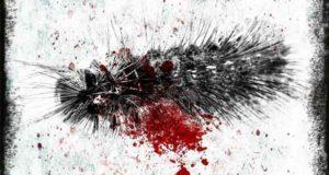 Bluthaar