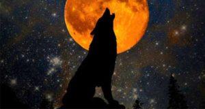 Crys Tale of the Moon: Werwölfe
