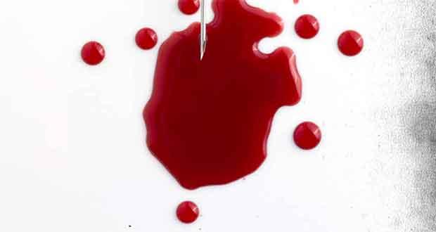 Dein Fleisch, mein Blut