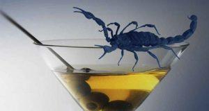 Der blaue Skorpion