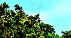 Ein Fall für Fuchs & Haas: Mord auf dem Leuchtturm
