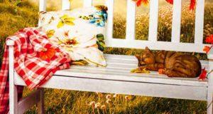 Herbstfunkeln