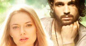 Irish Passion: Ava und Ciaran
