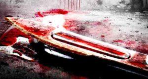 So einsam der Tod: Thriller