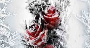 Wintermorde: Eiskalte Rache